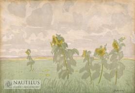 Słoneczniki, 1909