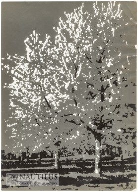 Kwitnące sady, 1960