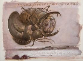 Pugna coelestris. Janowiec [Niebiańska wojna nad Janowcem], 1996