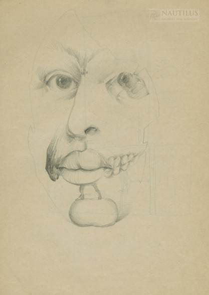 Van Fiut, Hegar, Maska (studium twarzy)