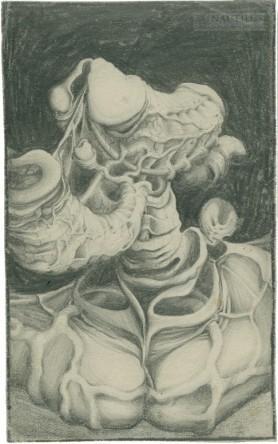 Trąba organiczna, 1960 - 1970