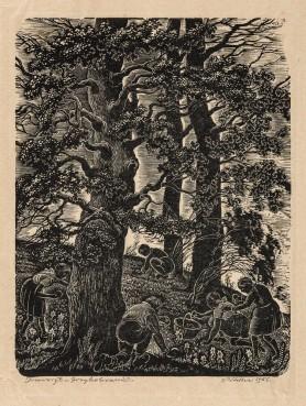 Grzybobranie, 1956