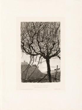 Blick auf San Miniato [Widok San Miniato], ok. 1910