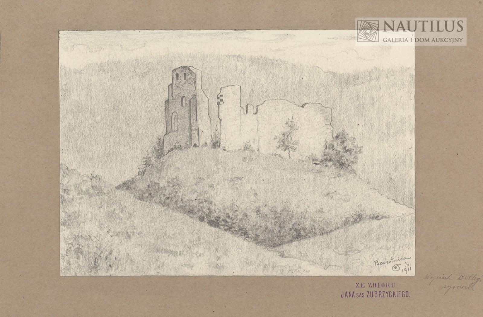 Ruiny zamku w Bochotnicy
