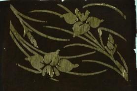 Irysy, XIX w.