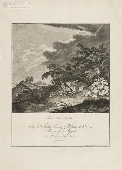 Ridinger Johann Elias, Szarak