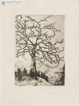 Drzewo, lata 20. XX w.